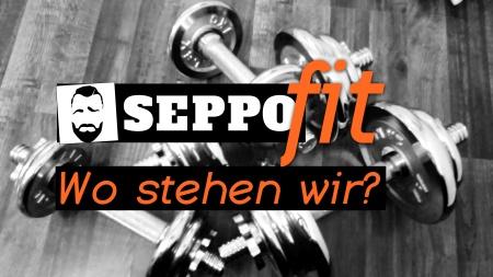 seppoFIT 1