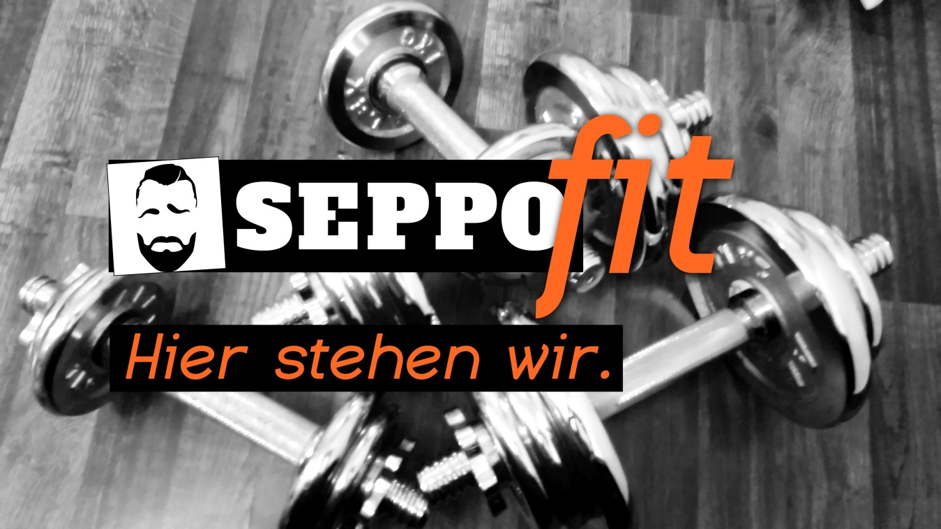 seppoFIT 2