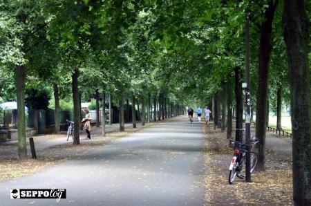 muensterpromenade26