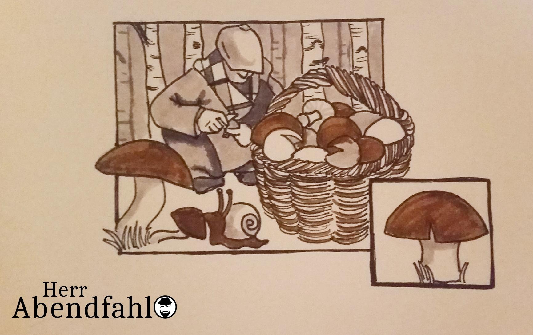 Herr Abendfahl geht in die Pilze